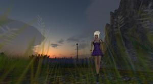 lilac_001