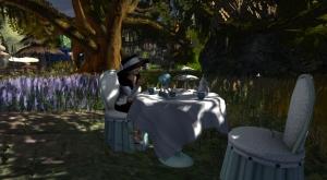 teaparty4_001